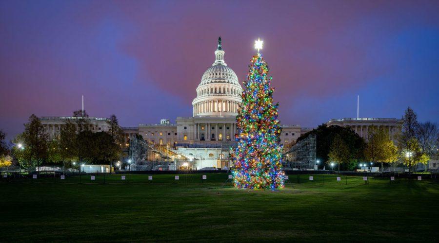 The 2020 Capital Christmas Tree passes through Park County, Colorado